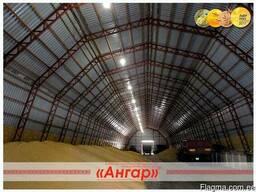 Где хранить зерно? Ангар - photo 6