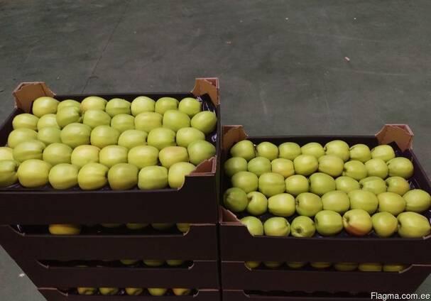 Яблоки из Польши! Apples from Poland!