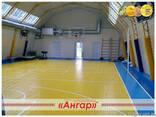 Ангары под разные виды спорта: спортивный зал, каток, площад - фото 2
