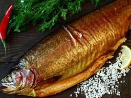 Ищем поставщиков рыбы и морепродуктов.