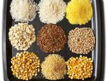 Кукурузные крупы в асортименте - photo 1