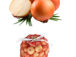 Овощи / фрукты