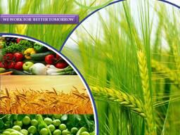 Pestitsiidide tootja ja tarnija kogu maailmas