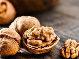 Продаём грецкий орех от тонны - photo 5