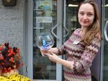 Живые бабочки - продажа готового бизнеса, франшиза. - photo 1